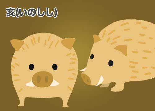 亥(いのしし)猪のイラスト