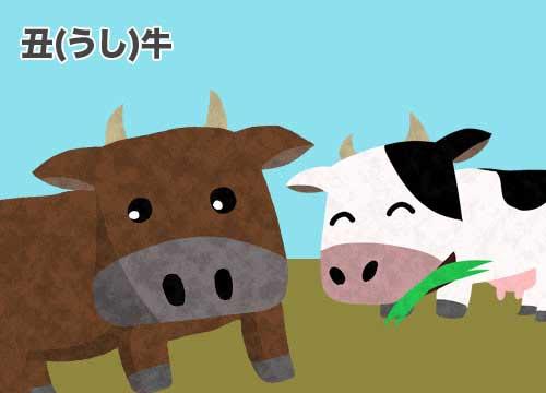丑(うし)牛のイラスト