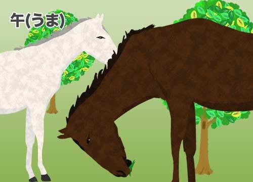 午(うま)馬のイラスト