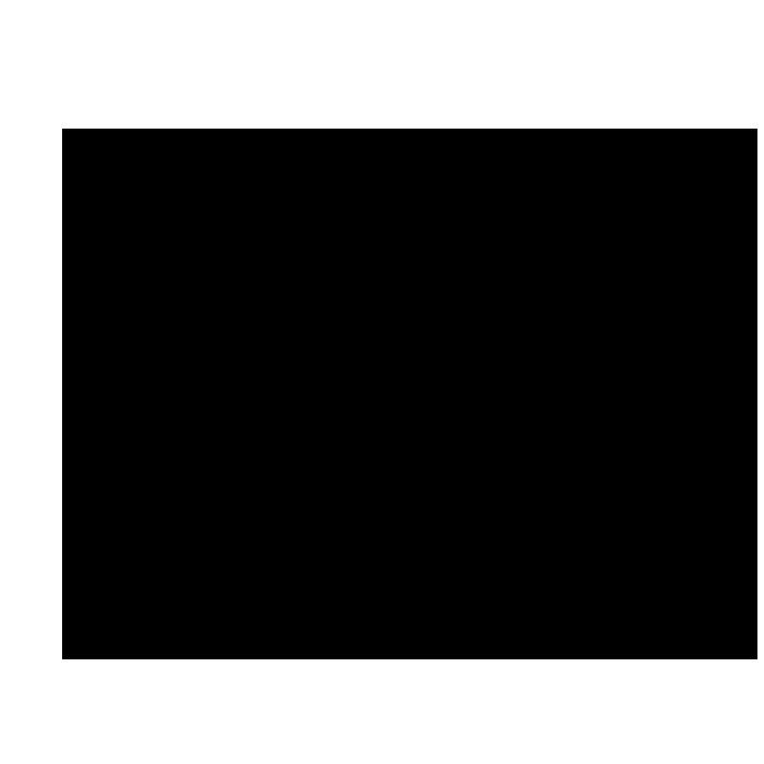 フローラルイラスト1