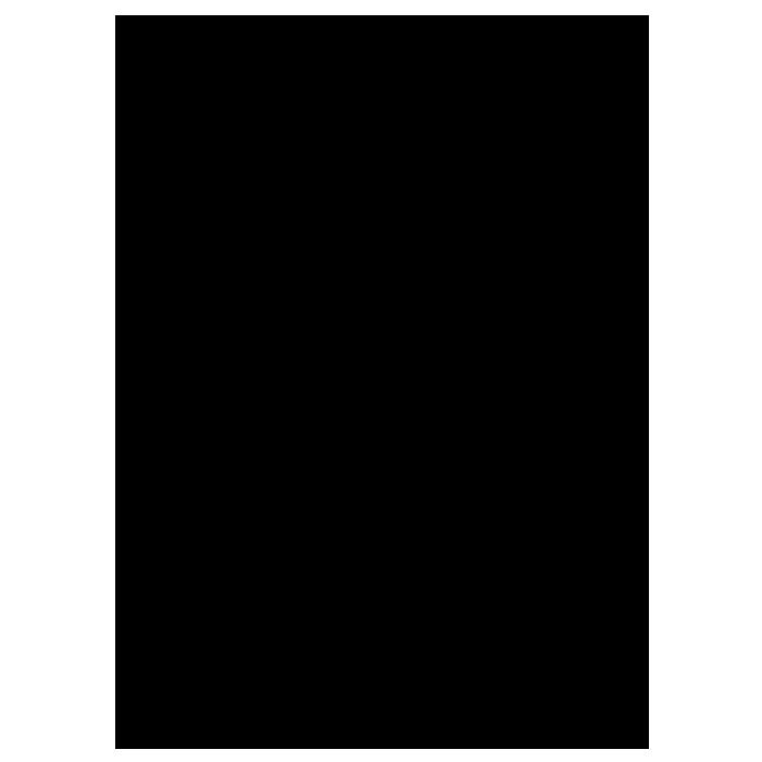 フローラルイラスト6