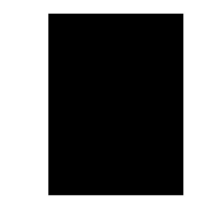 フローラルイラスト7