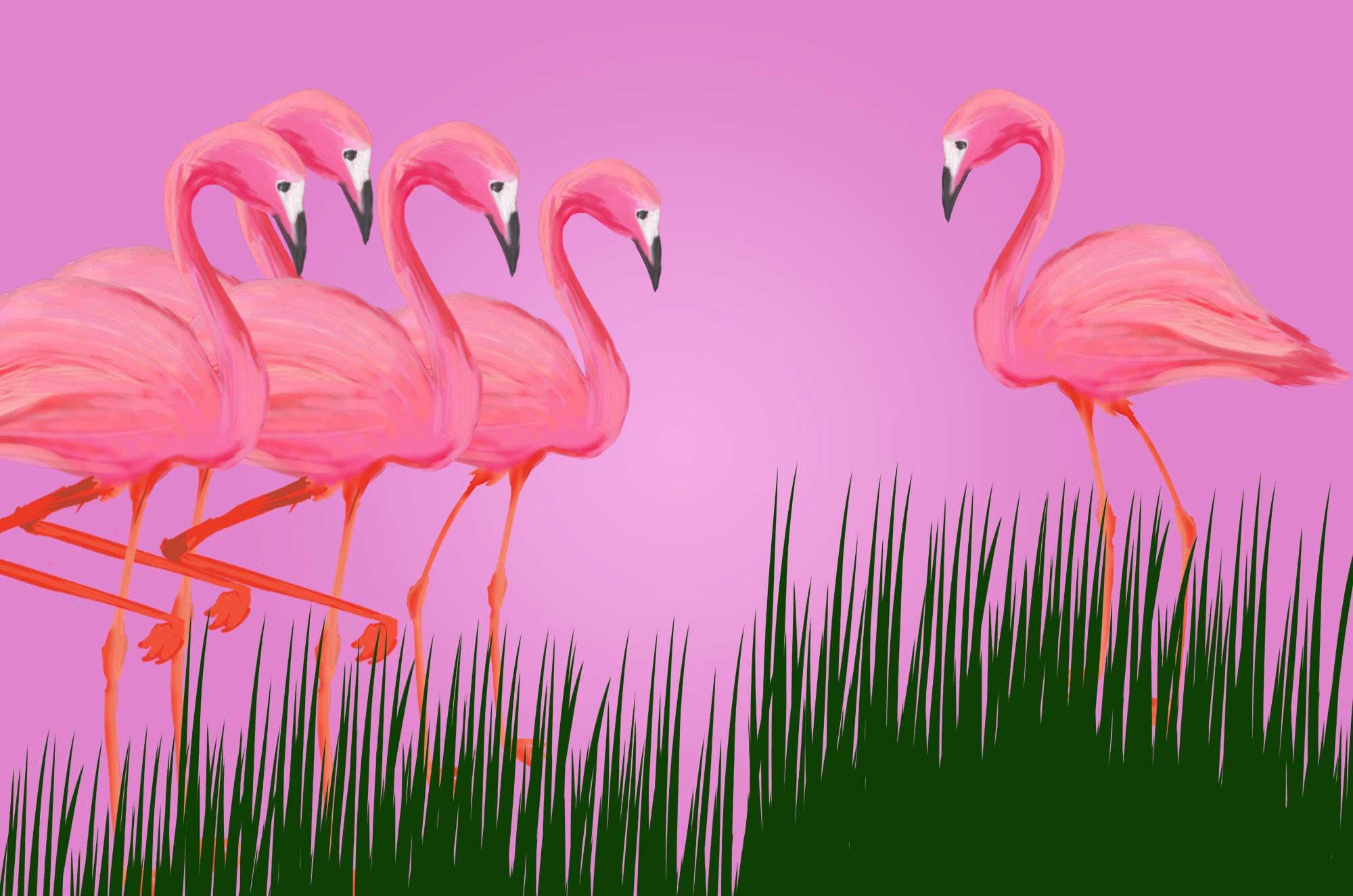 フラミンゴイラスト - ピンク色の可愛い鳥の素材
