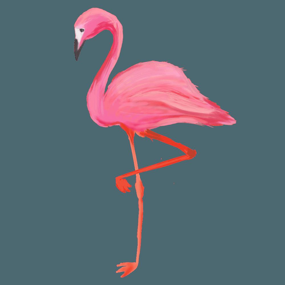フラミンゴイラスト - ピンク色の可愛い鳥の素材 - チコデザ