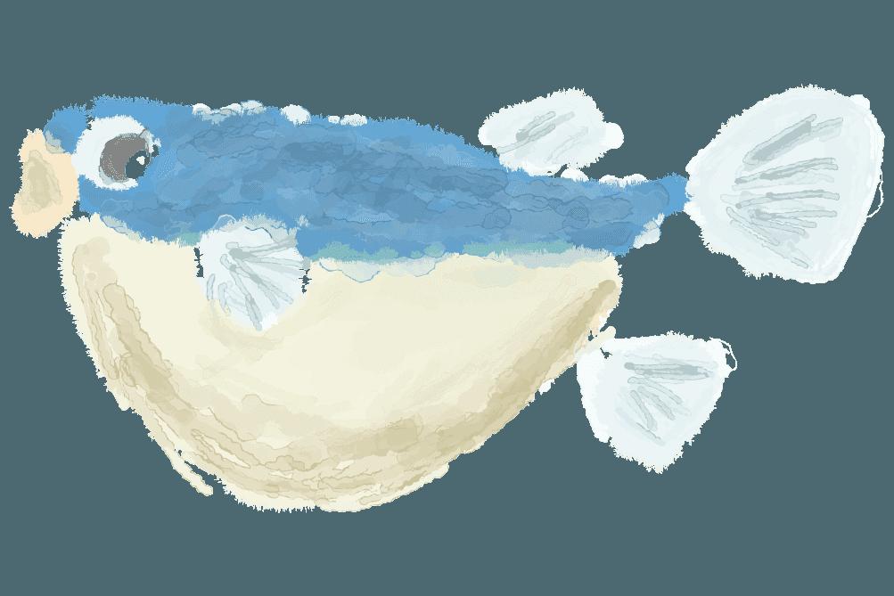 水彩で描くふぐのイラスト