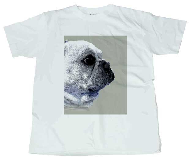 funny-french4フレンチブルドッグTシャツ ホワイト