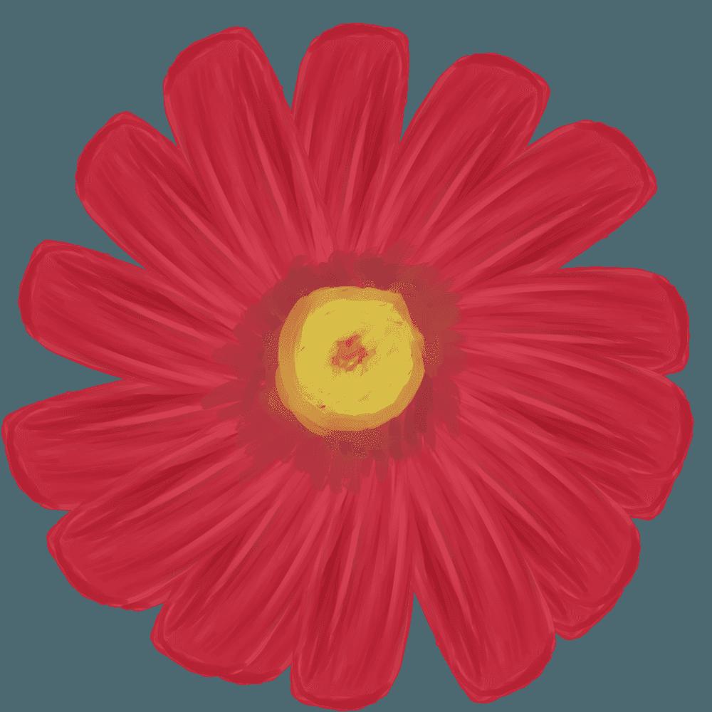 赤い水彩画のガーベライラスト