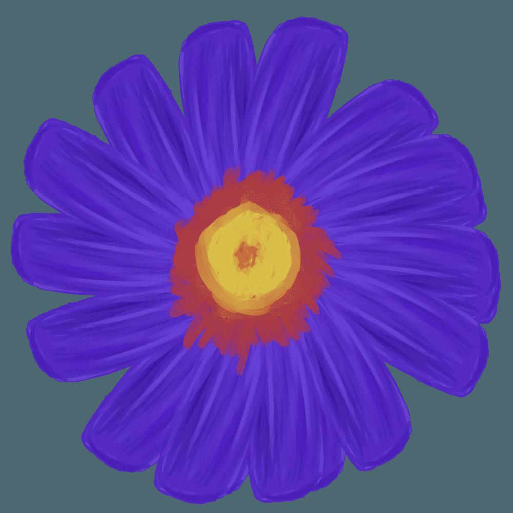 ディープブルーのガーベラ水彩イラスト