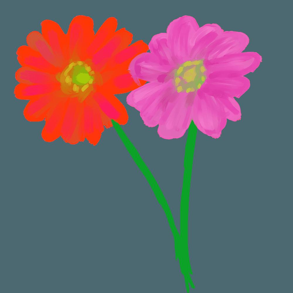 水彩ガーベラのにじんだ花々のイラスト