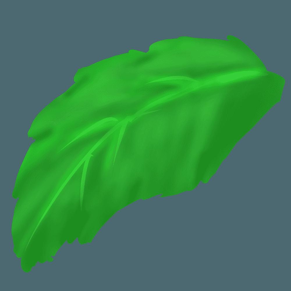 ガーベラの葉っぱのイラスト