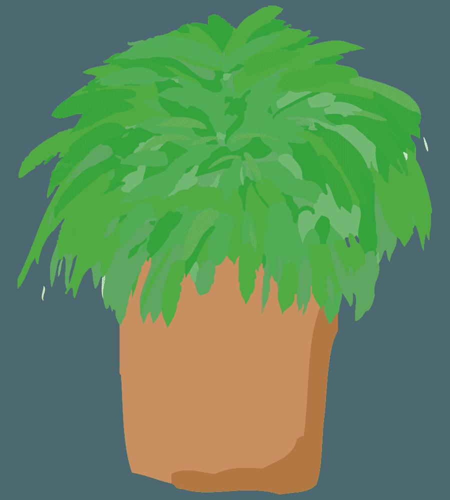 シンプルな鉢と植物のイラスト