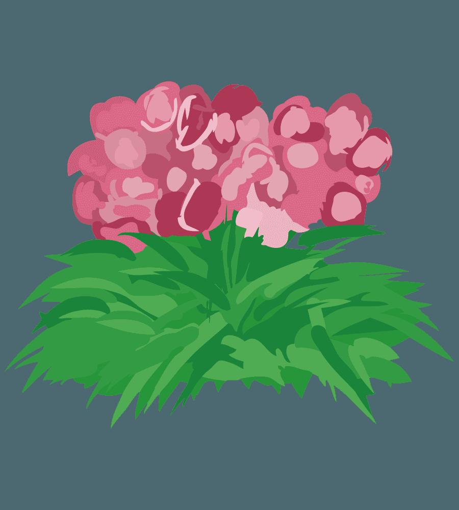 ガーデニング用の朱色の花のイラスト