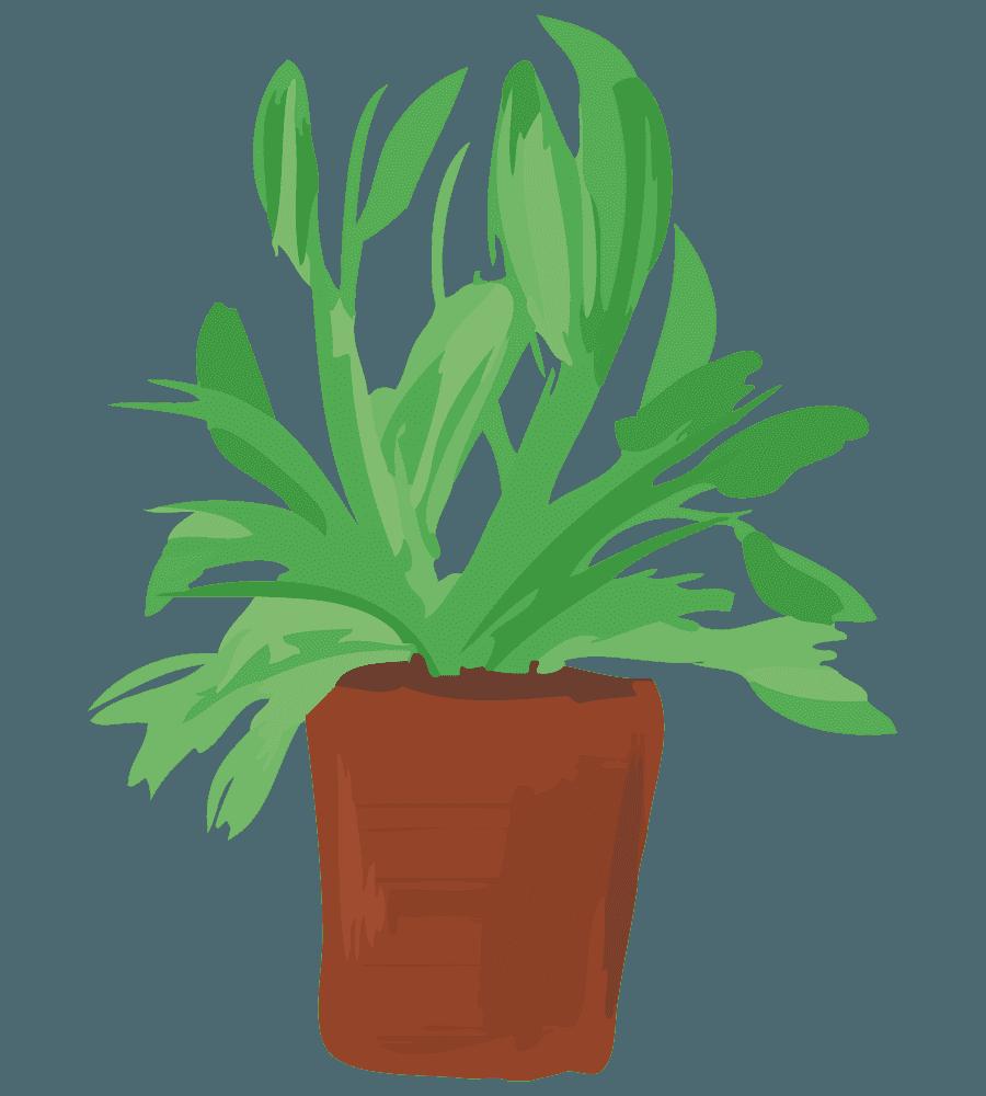葉っぱと鉢植えのイラスト