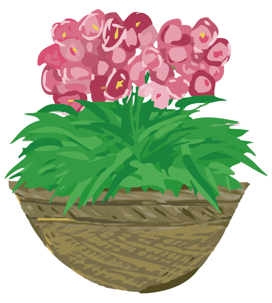 ピンク色の鉢植えの花のイラスト