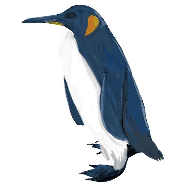 リアルペンギンデザイン