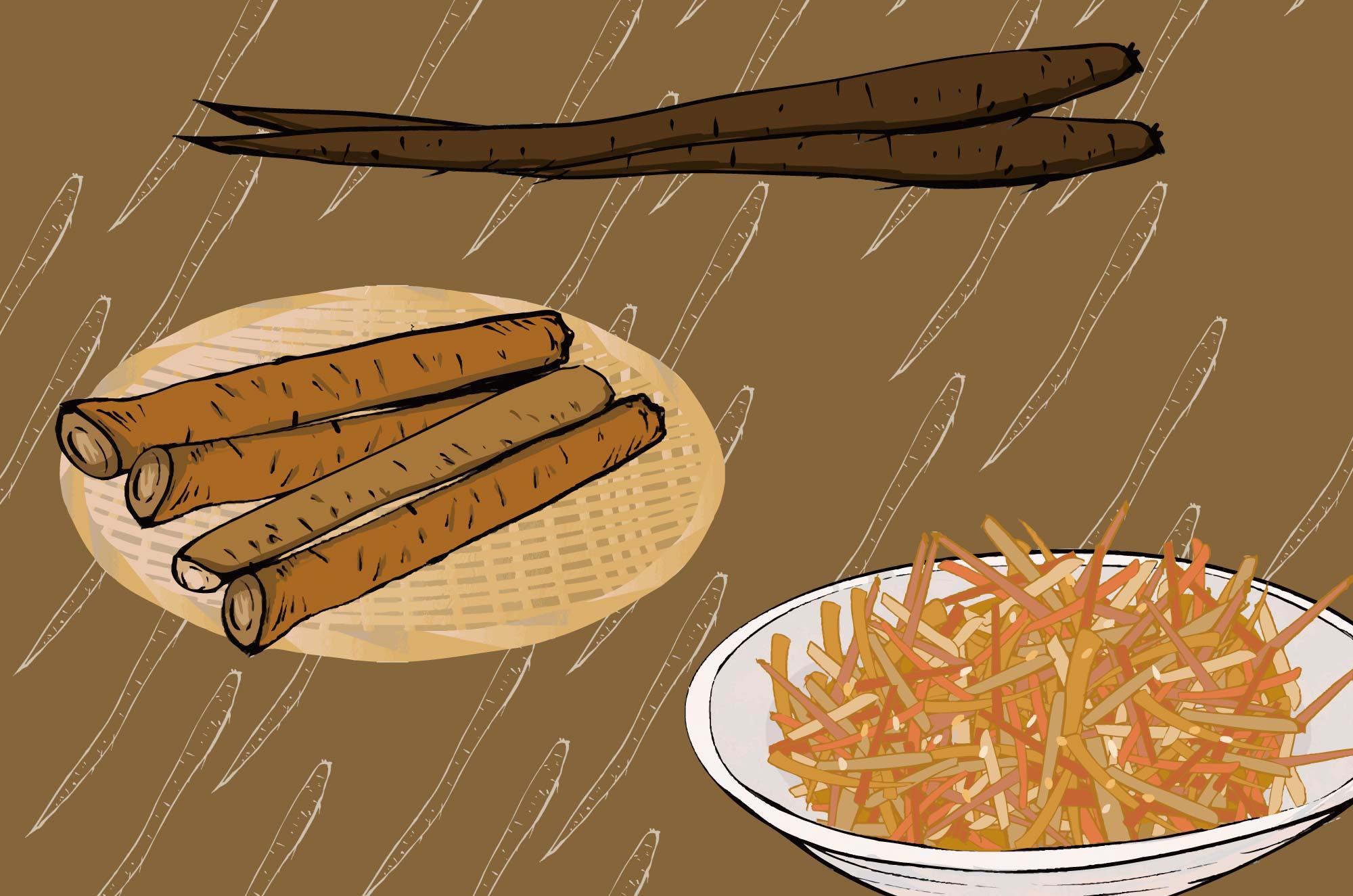 ごぼうのイラスト - 天ぷら・きんぴら・根菜フリー素材