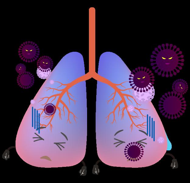 コロナウイルスの肺のイラスト