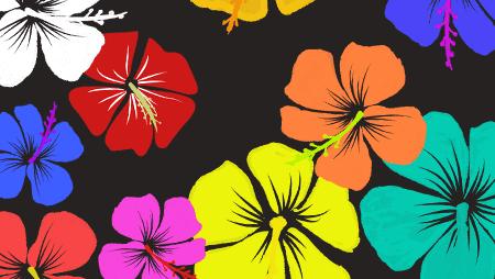 ハイビスカスイラスト - 可愛い南国イメージの花画像素材