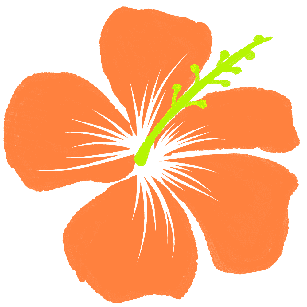 薄いオレンジ色のハイビスカスイラスト