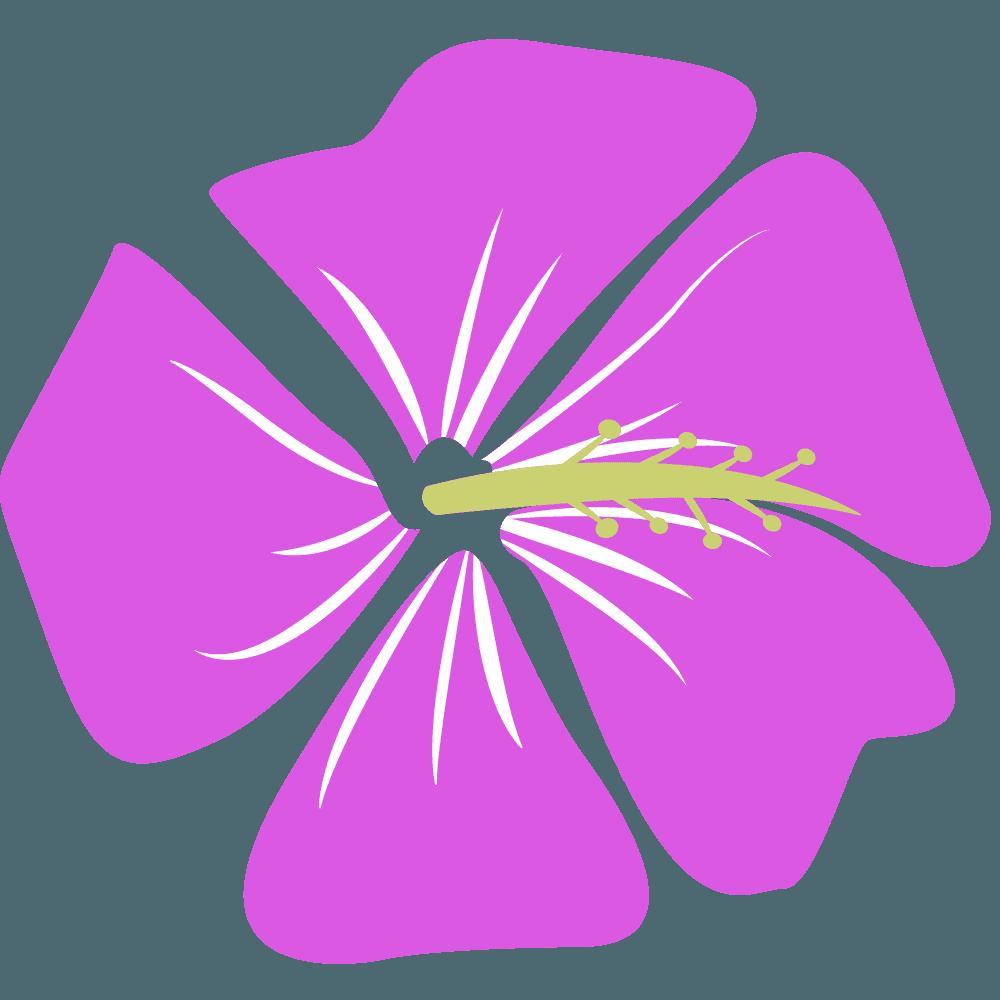 ピンク色のハイビスカスイラスト