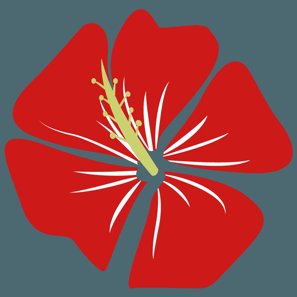 真っ赤の奇麗なハイビスカスイラスト