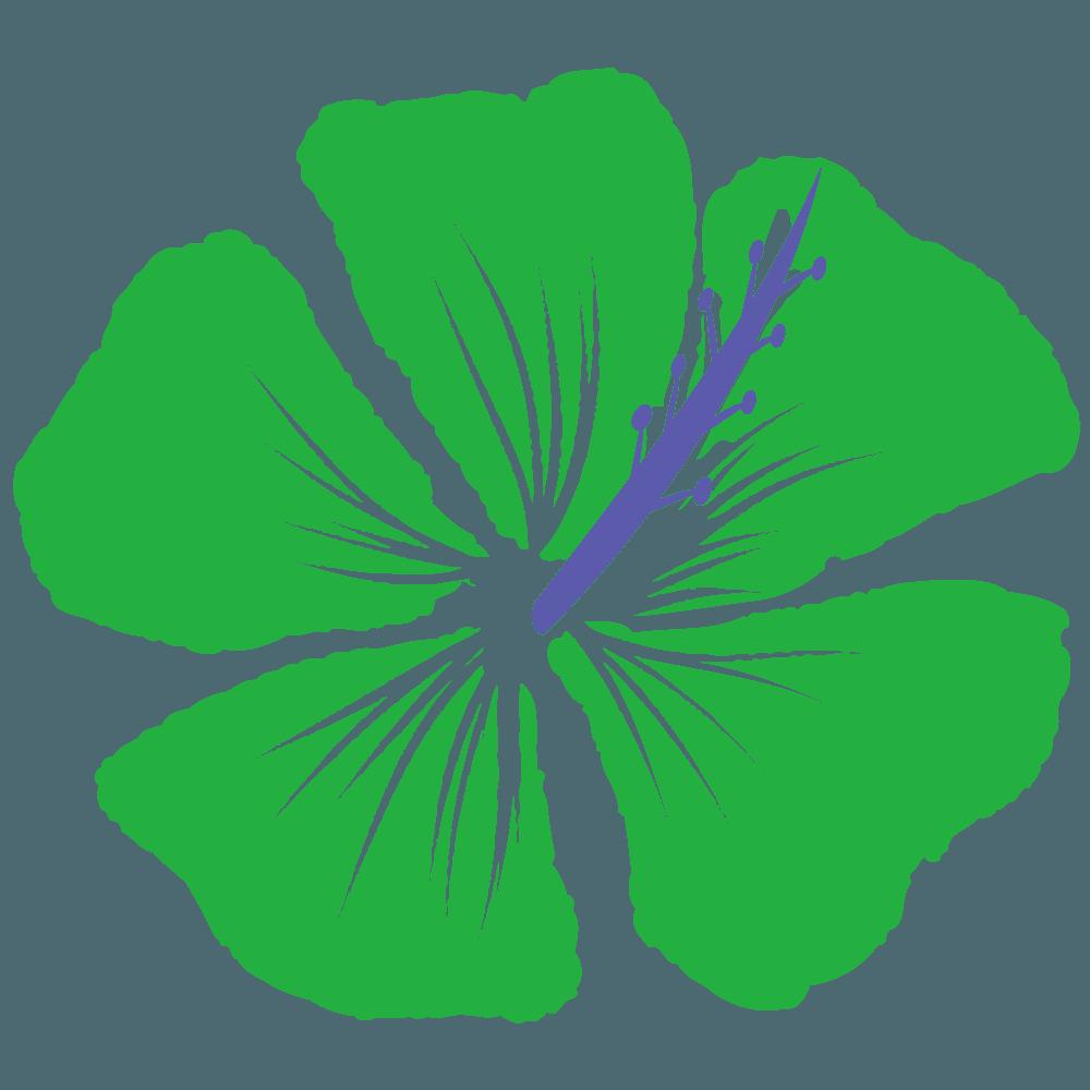 緑色のハイビスカスイラスト