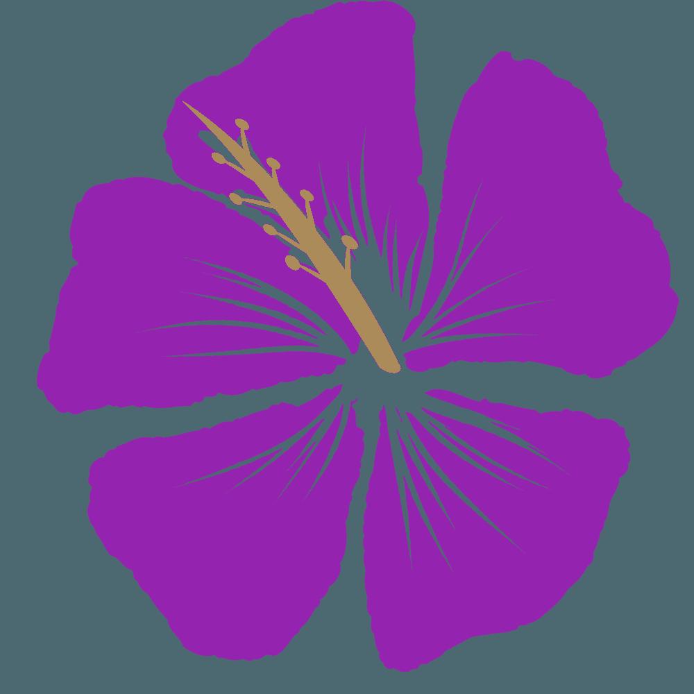 紫色のハイビスカスイラスト