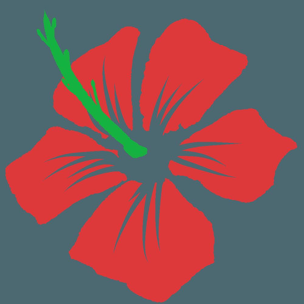 ハイビスカスイラスト 可愛い南国イメージの花画像素材 チコデザ