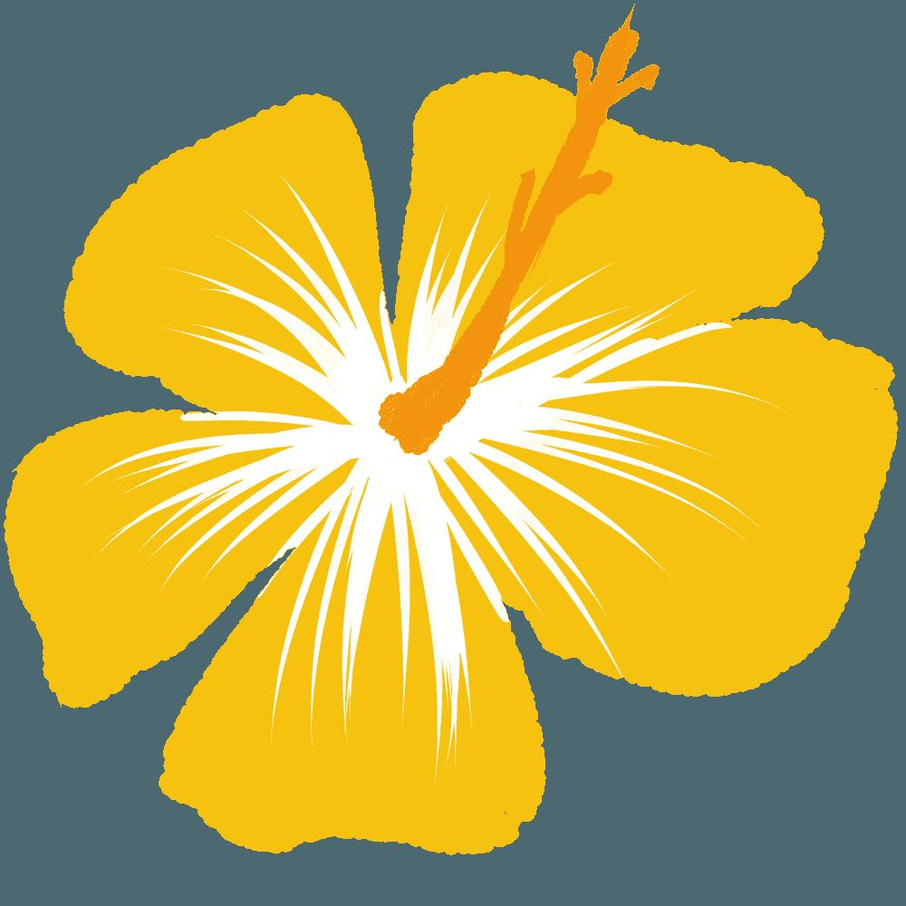 黄色いハイビスカスイラスト