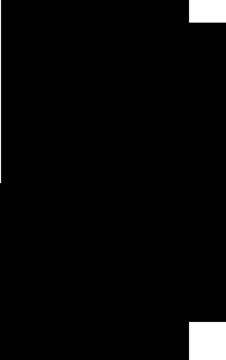 線画の白菜のイラスト