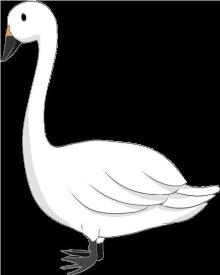 可愛い白鳥のイラスト