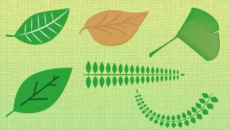 可愛い葉っぱイラスト - グリーンのデザイン無料素材