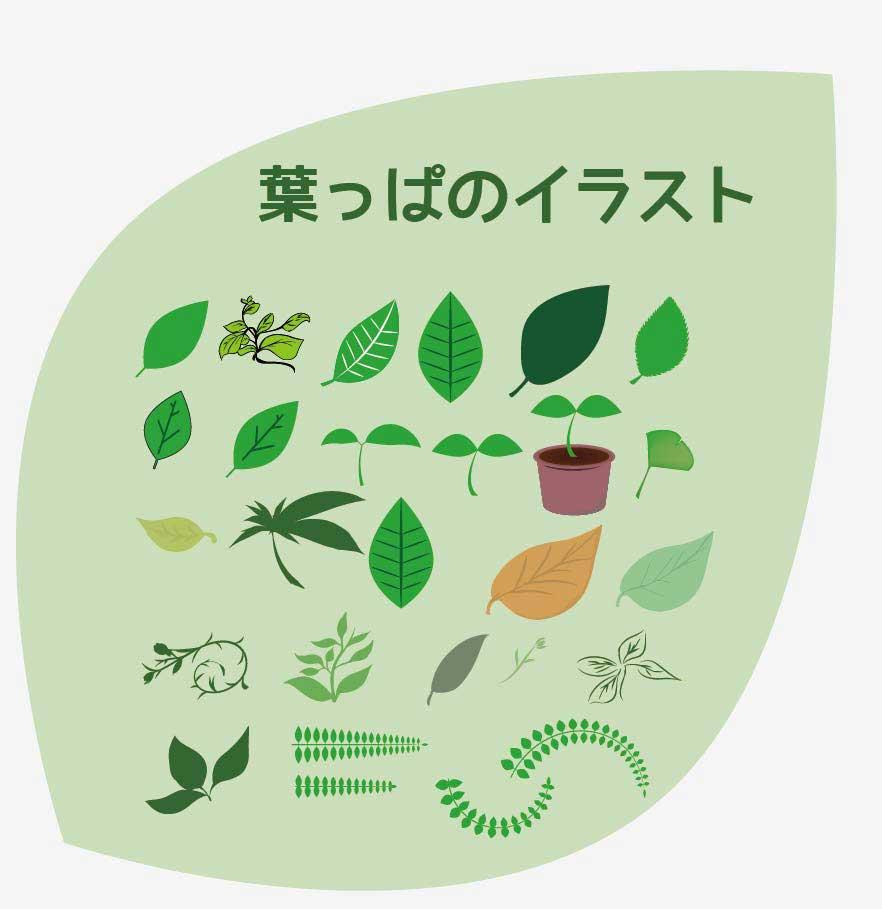葉っぱのベクターイラストセット
