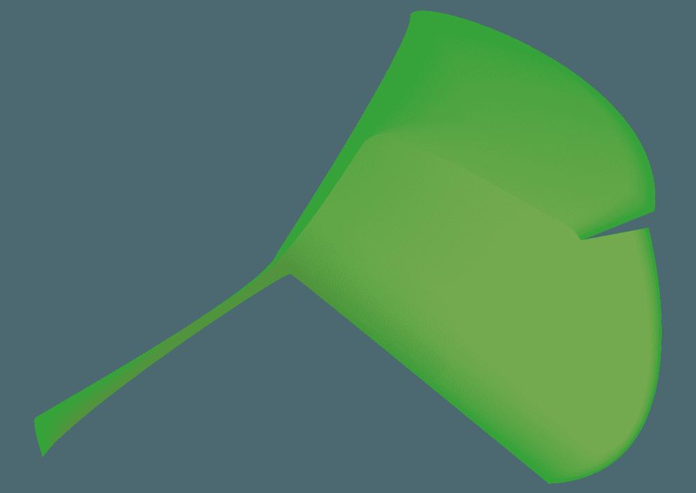 イチョウの葉っぱのイラスト