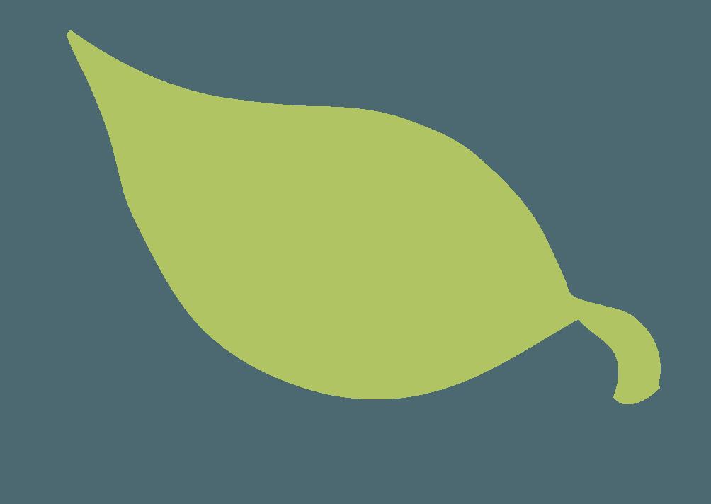 枯れかかった葉っぱのイラスト