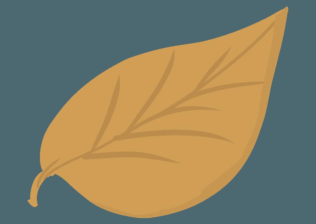 枯れた葉っぱのイラスト
