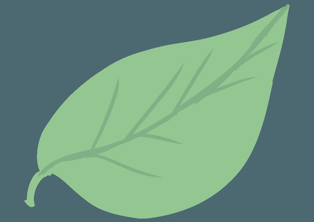 淡い色の葉っぱのイラスト