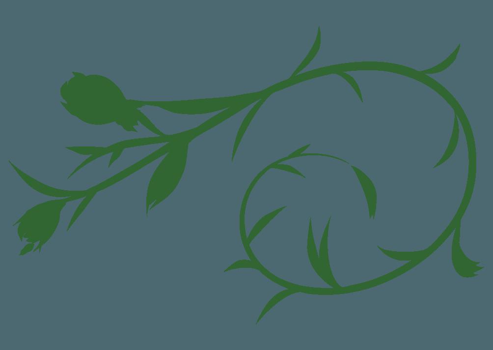 葉っぱとツルの装飾デザインイラスト