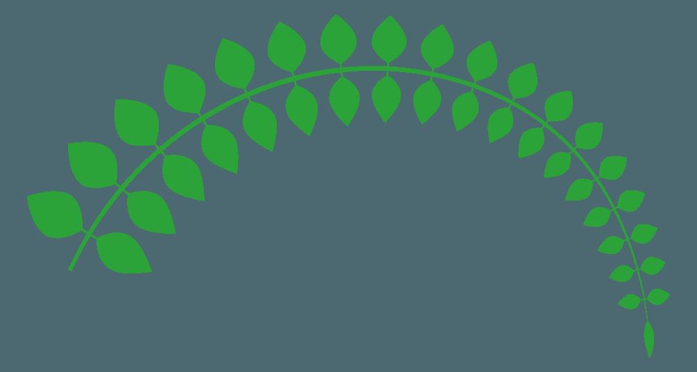 アーチ状に曲がった葉の線イラスト