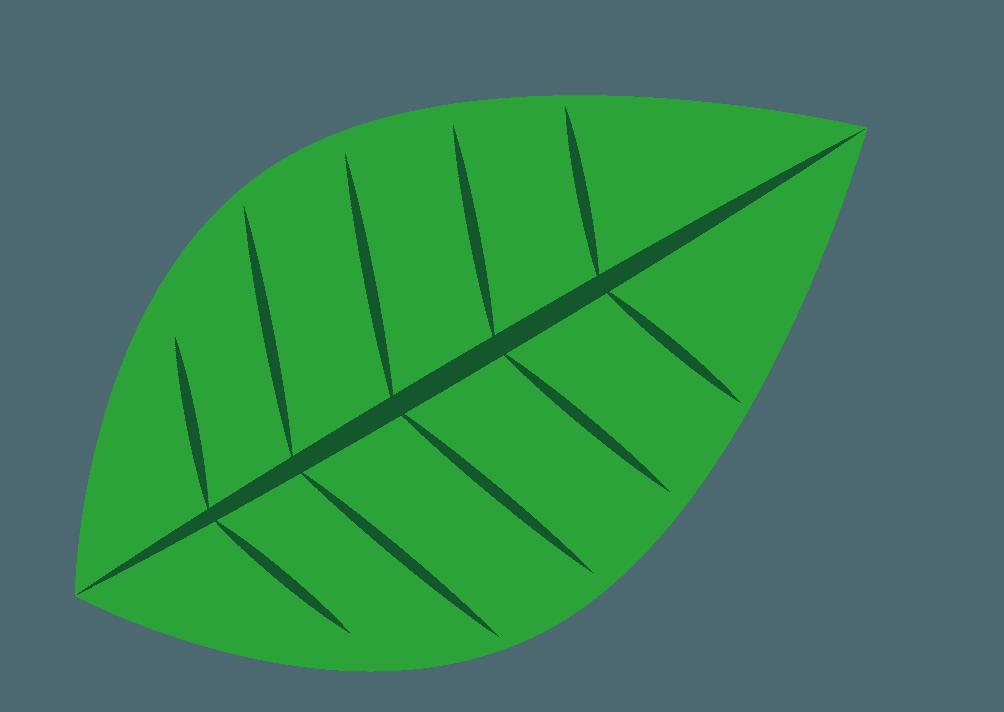 可愛い葉っぱのイラスト