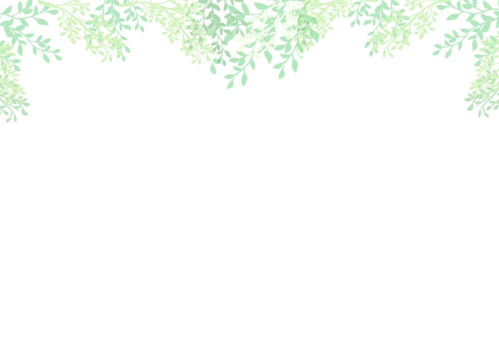 葉の背景フレーム(上のみ)のイラスト