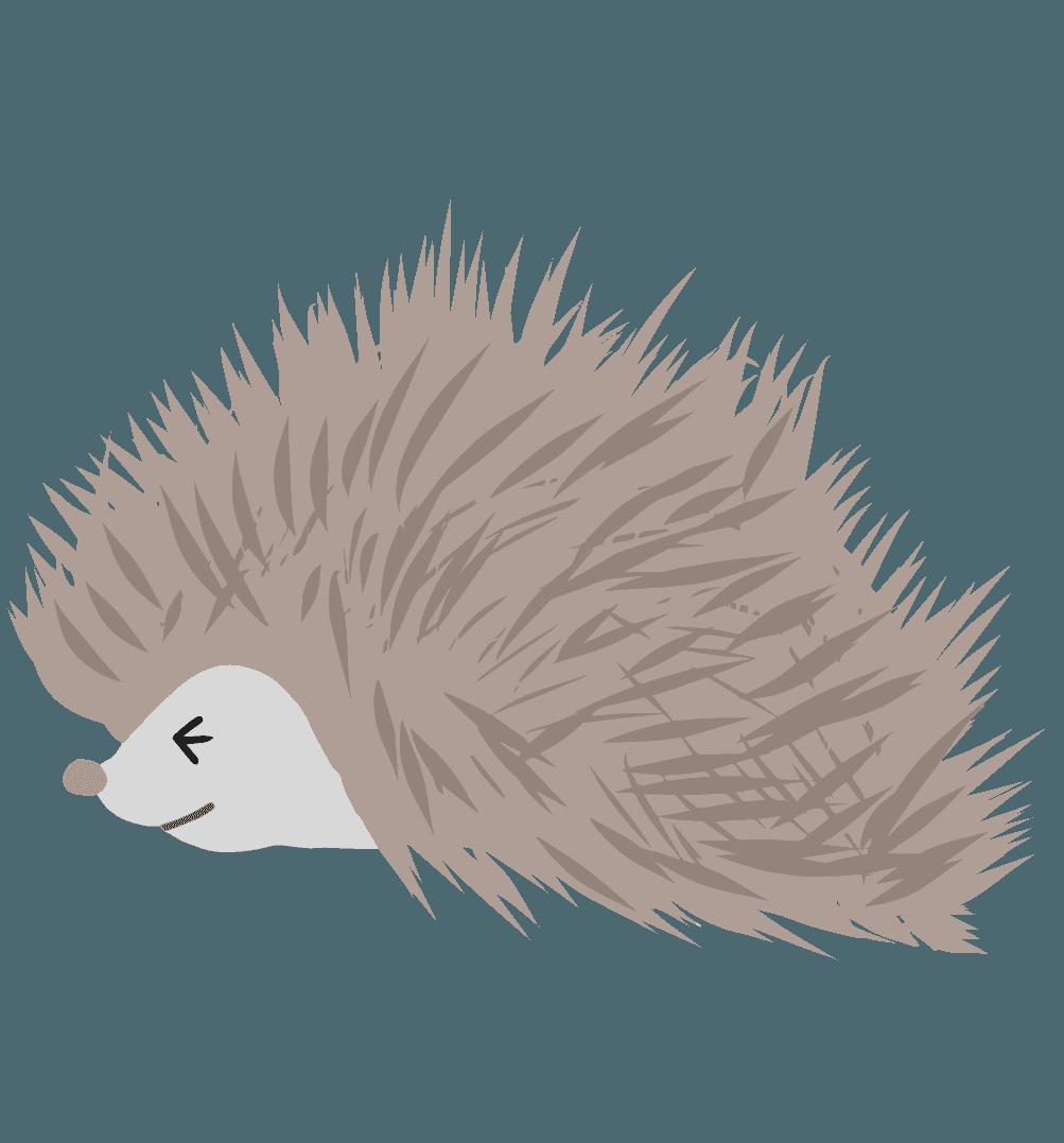 防御中のハリネズミのイラスト