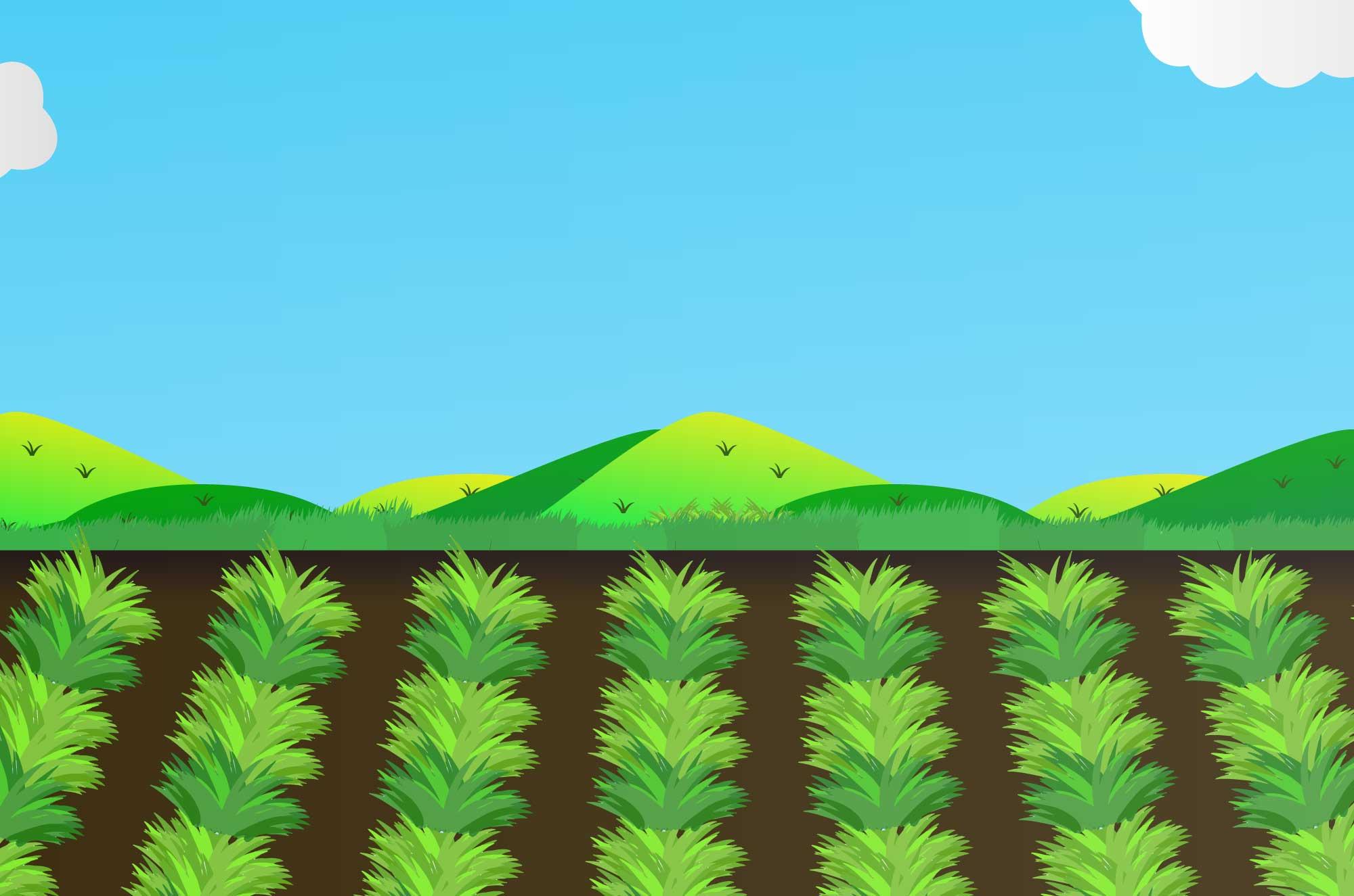 畑のイラスト - 野菜と土と空・自然の背景無料素材
