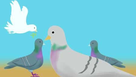 鳩イラスト - 空を自由に飛ぶ平和の鳥の無料素材集