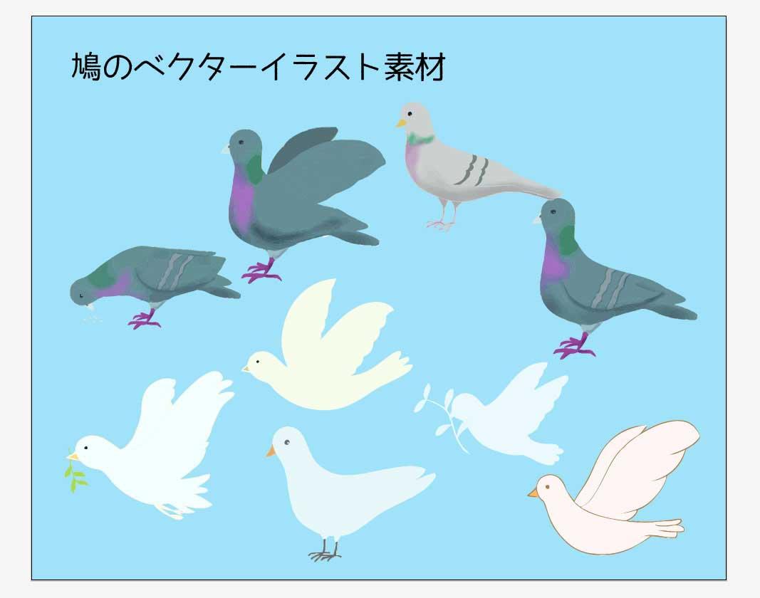 鳩のイラストベクター素材
