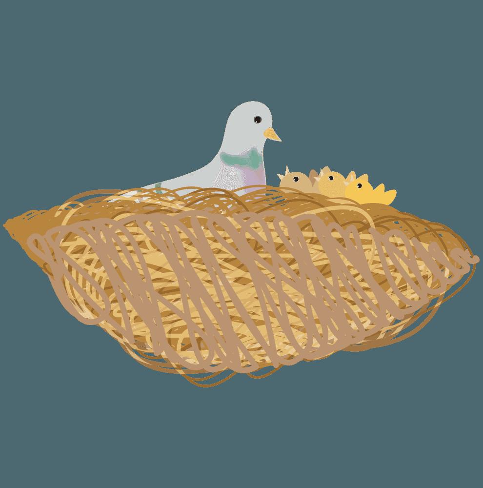 鳩の巣とヒナのイラスト