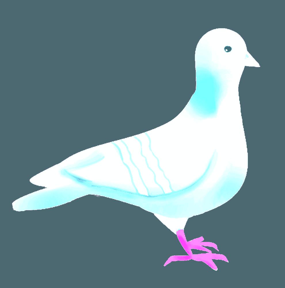 平和の象徴白い鳩イラスト