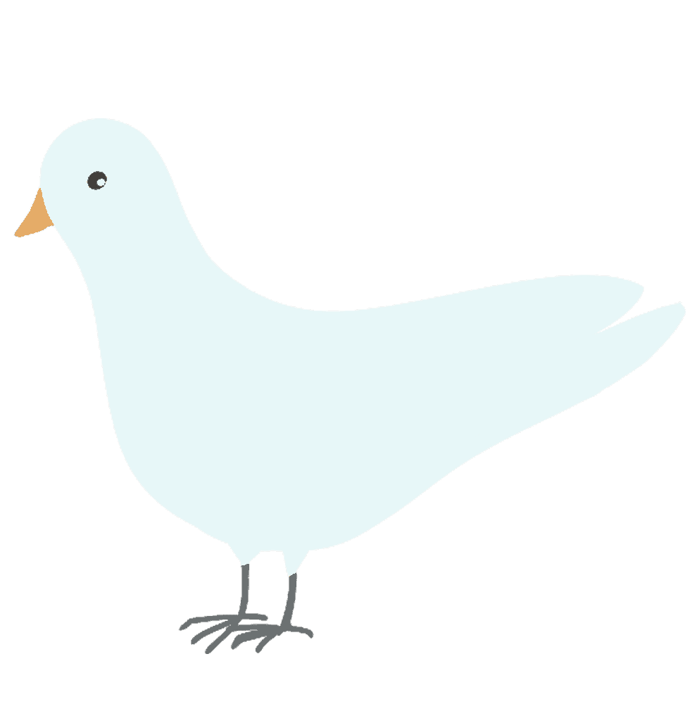 白い鳩イラスト