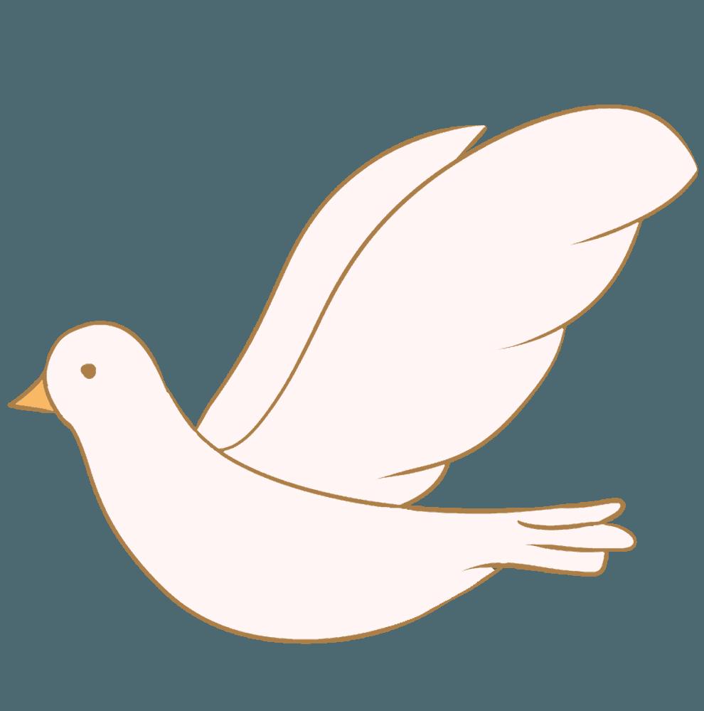 可愛い白い鳩イラスト