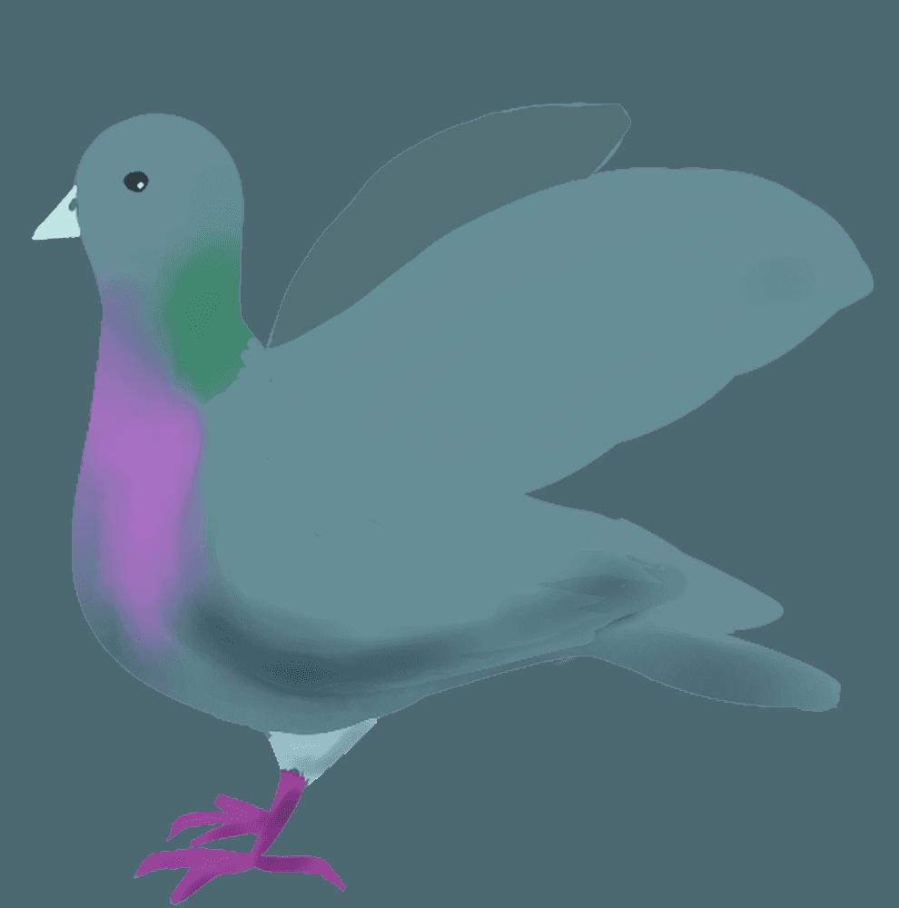 羽ばたこうとする鳩イラスト
